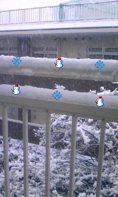 雪だーーー!!!